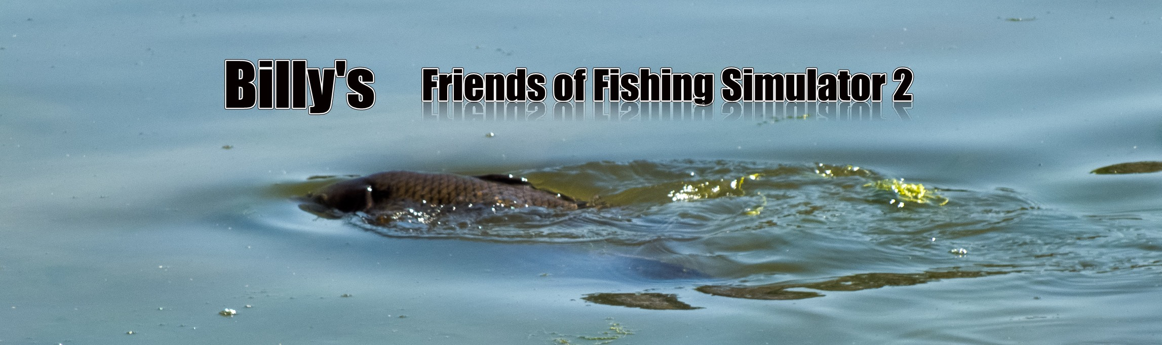 Friends of Fishing Simulator 2